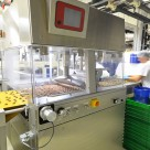 Полимерные наливные полы для пищевых производств