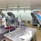 Полимерцементные промышленные полы для пищевых производств